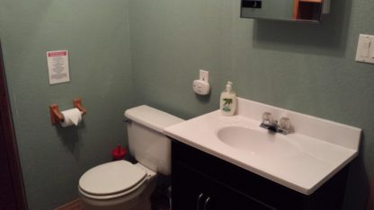 Aframe basement bathroom vanity