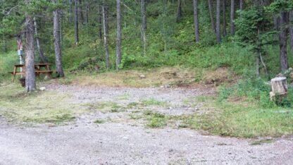 Campsite Site 8